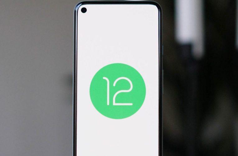 Android 12 güncelleme takvimi açıklandı